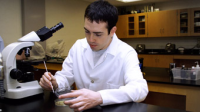 B.S. Degree in Medical Laboratory Sciences